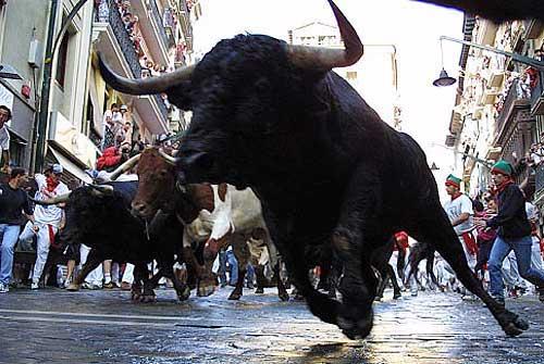 Бег от быков в Испании