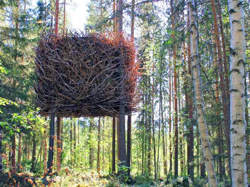 домик на дереве The Birds' Nest
