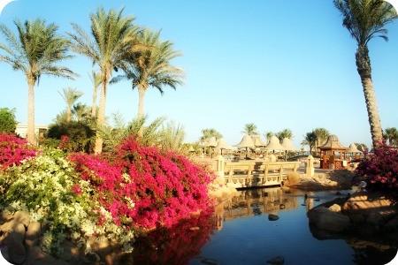 Отдых...Египет...Зима...