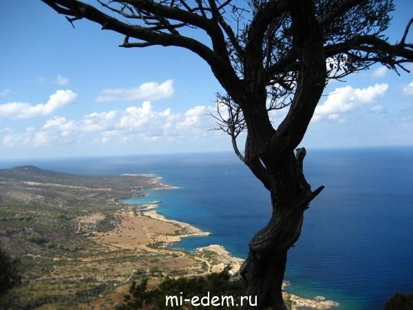 Температура воды на Кипре по месяцам
