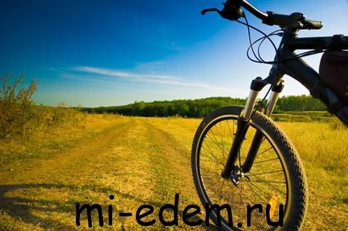 Маршруты для велотуризма