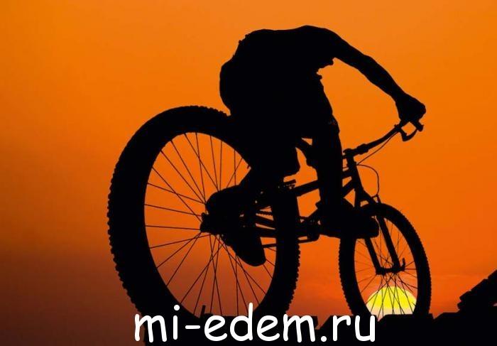 велотуризм маршруты