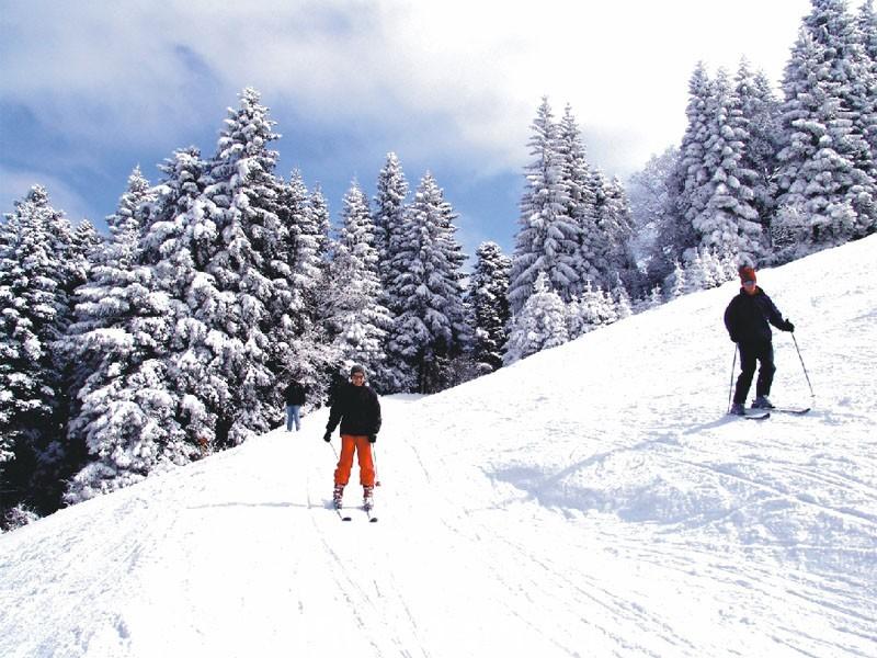 Отдых в Болгарии в феврале