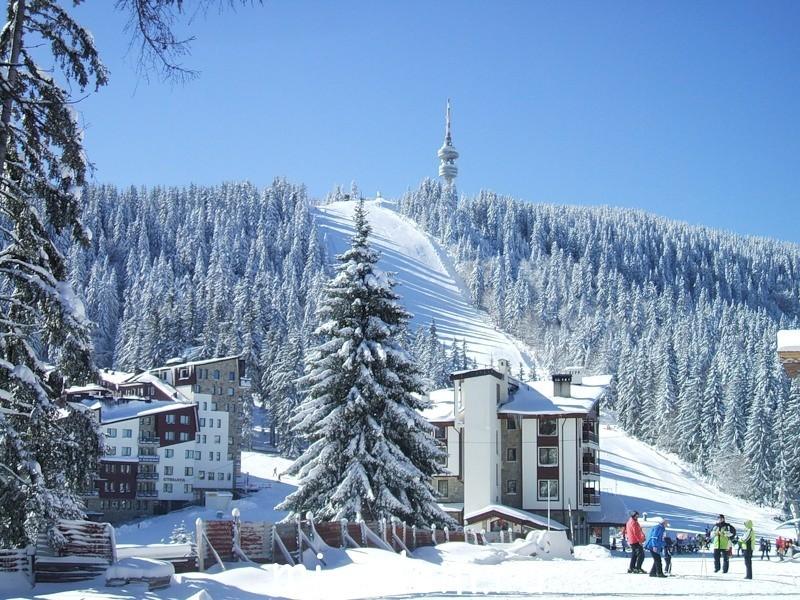 Отдых в Болгарии в январе