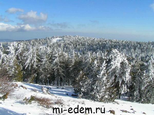 Погода на Кипре в январе