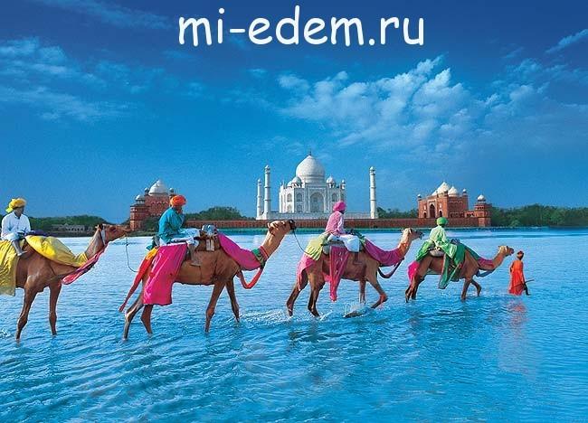Индия в декабре