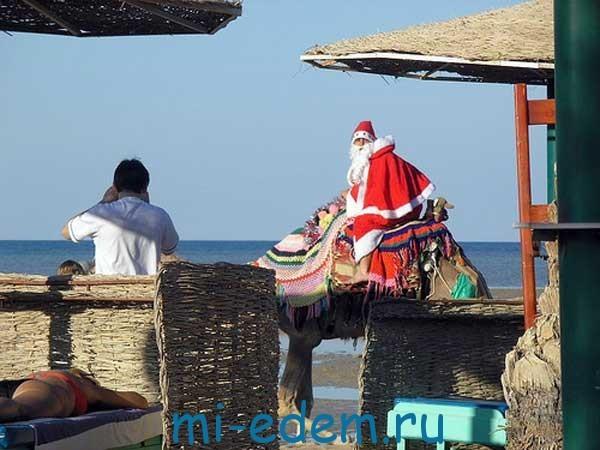Отдых в Египте зимой