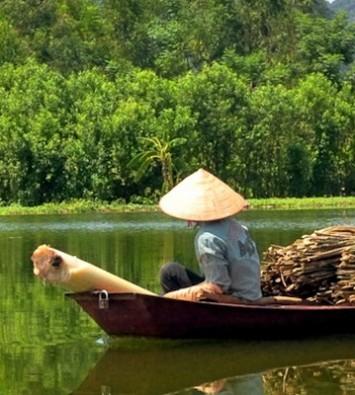 Отдых во Вьетнаме (отзывы)