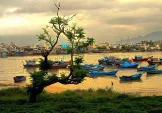 Вьетнам в августе