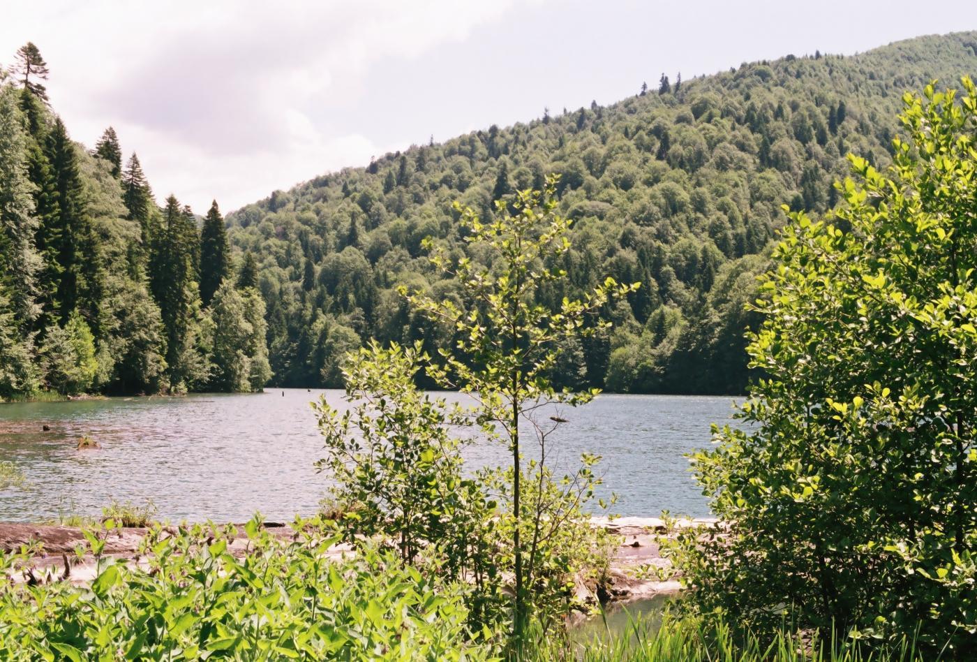 озеро Кведи